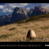 Kalender Dolomiten 2015 August