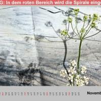 Kalender fleurs & art 2016 November